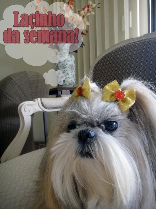 lacinho-dorinha-21-04-2013
